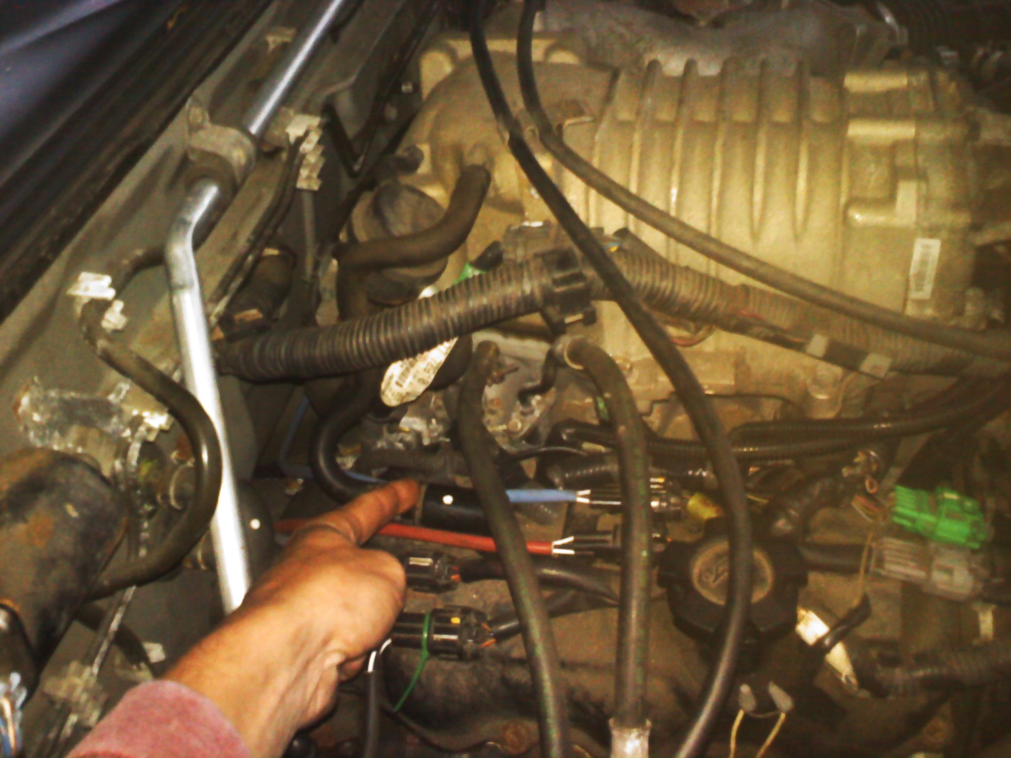 Fuel Filter Location 2004 Nissan Cube Wiring Library Cc S C Pcv Valve Frontier Forum 2005 Altima
