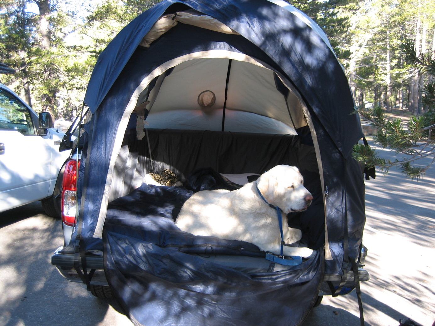 Click image for larger version Name IMG_0829.jpg Views 11128 Size 480.2 & Bed Tent~Thoughts u0026 Opinions? - Page 4 - Nissan Frontier Forum